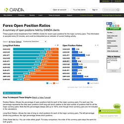 Foreign Exchange Positions