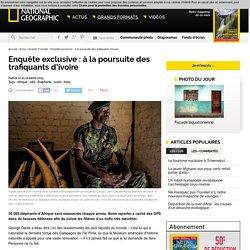 Enquête exclusive : à la poursuite des trafiquants d'ivoire