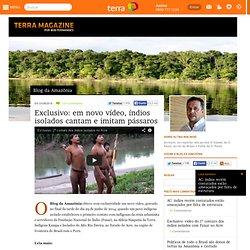 Exclusivo: em novo vídeo, índios isolados cantam e imitam pássaros