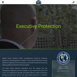Excutive Protection Services