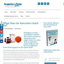 What Does An Executive Coach Do? - Perspective in Action
