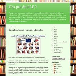 T'as pas du FLE ?: Exemple de leçon 0 : expatriés à Bruxelles