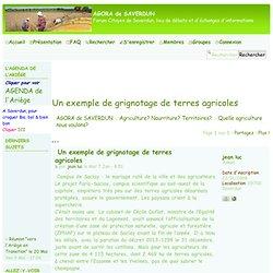 Un exemple de grignotage de terres agricoles
