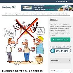 Exemple de TPE S : le stress