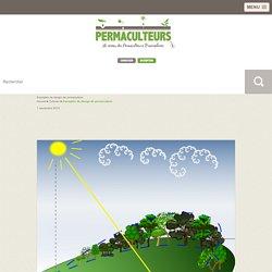 Exemples de design de permaculture