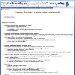 Exemples de thèmes / sujets de recherche en SNT