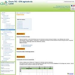Exercices - Cours TIC - CFA agricole du Loiret