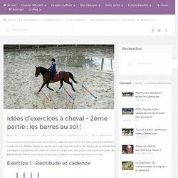 Idées d'exercices à cheval – 2ème partie : les barres au sol !
