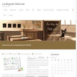 Exercices de compréhension Pilotis – Le blog de Chat noir