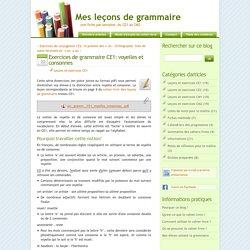 Exercices de grammaire CE1: voyelles et consonnes - Mes leçons de grammaire