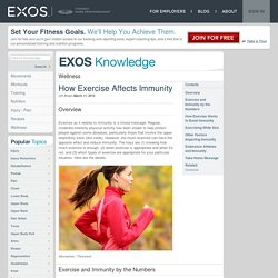 How Exercise Affects Immunity