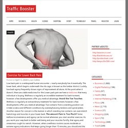 Exercise for Lower Back Pain – Traffic Booster