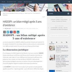 HADOPI : un bilan mitigé après 5 ans d'existence – Économie numérique