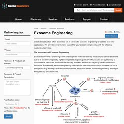 Exosome Engineering