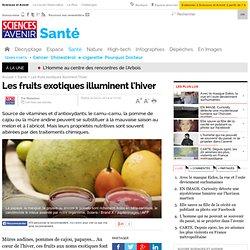Les fruits exotiques illuminent l'hiver