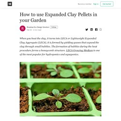 How to use Expanded Clay Pellets in your Garden - Rivashaa Eco Design Solution - Medium