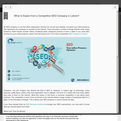What to Expect from a Competitive SEO Company in Lahore?