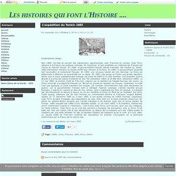 L'expédition du Tonkin 1885 - Les histoires qui font l'Histoire ....