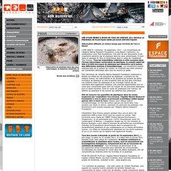 Tara Oceans - PRESENCE DE PLASTIQUE DANS LES EAUX ANTARCTIQUES / RESULTATS 9 MOIS APRES LE PASSAGE DE TARA