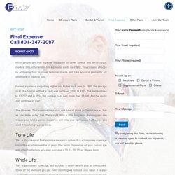 Final Expense Life Insurance Company – Brady Insurance Marketing