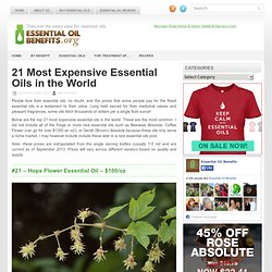 21 Most Expensive Essential Oils in the World - Essential Oil Benefits