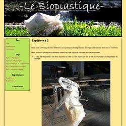 Expérience 2 - TPE - Bioplastique