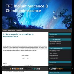 b. Notre expérience, modéliser la Bioluminescence
