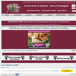 Forum chats et chatons