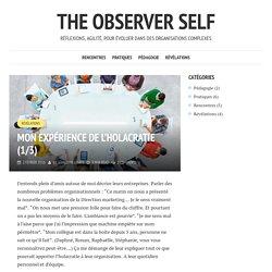 Mon expérience de l'holacratie (1/3) - The observer self