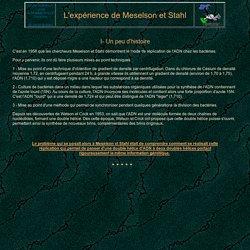 Expérience de Meselson et stahl