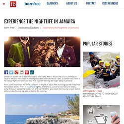 Experience the Nightlife in Jamaica - Born Free - Fare Buzz Blog