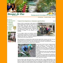 Bosque de Paz - Ecuador - Tropical Farm Experience ( Volunteer opportunities)