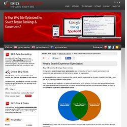 Search Experience Optimization (SXO)