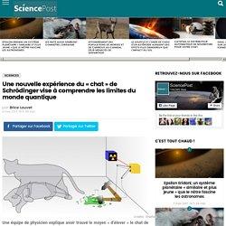 """Une nouvelle expérience du """"chat"""" de Schrödinger vise à comprendre les limites du monde quantique"""