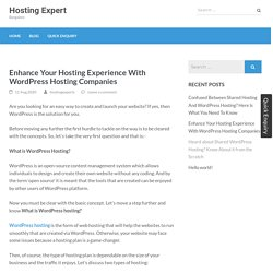Enhance Your Hosting Experience With WordPress Hosting Companies – Hosting Expert