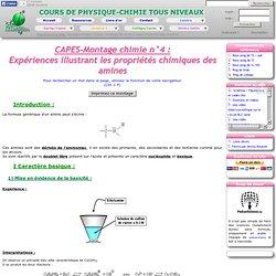 CAPES-Montage chimie n°4 : Expériences illustrant les propriétés chimiques des amines