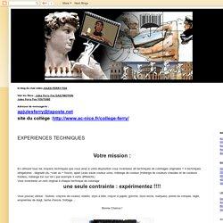 ARTPLAFOX: EXPERIENCES TECHNIQUES
