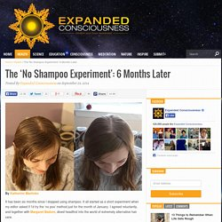 The 'No Shampoo Experiment': 6 Months Later - Expanded Consciousness