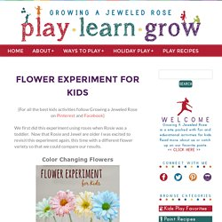 Flower Experiment for Kids