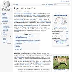 Wikipedia:Unusual articles