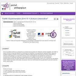 """Enseigner Langue vivante (espagnol) lycée - TraAM / Expérimentation 2014-15: """"L'écriture collaborative"""""""