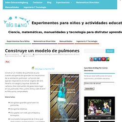 Experimentos para niños y actividades educativas