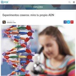 Experimentos caseros: mira tu propio ADN - Batanga