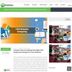 Expert Tips On CMS Responsive Design