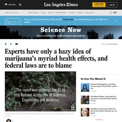 Experts have only a hazy idea of marijuana's myriad health effects, and federal laws are to blame - LA Times