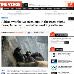 A bitter war between chimps in the 1970s might be explained with social networking software