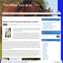What's that? Explaining Breast Collars