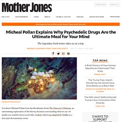 Micheal Pollan Explains Why Psychedelic Drugs Are the Ultimate Meal for Your Mind