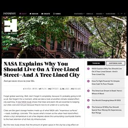 NASA Explains Why You Should Live On A Tree-Lined Street