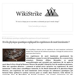 30/10/12 Physiq quantiq expliq les EMI? SITE Wikistrike .com